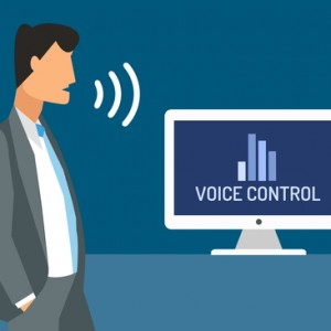 Voice Control Systems